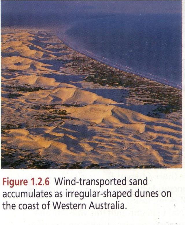 coastal sand dunes case study stockton beach